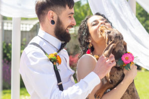 Dog Friendly Weddings at Applewood Hall